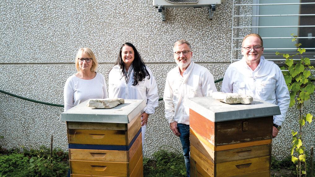 Newsbeitrag-Bienen1